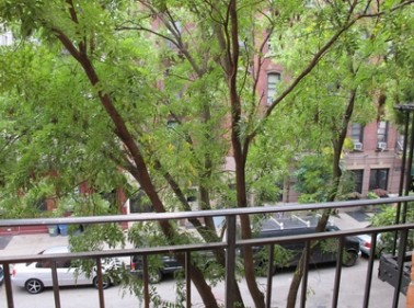 521 East 5th Street, New York, NY