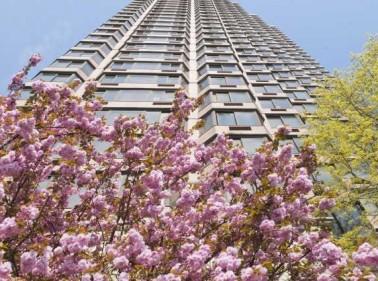 Paramount Tower, New York, NY